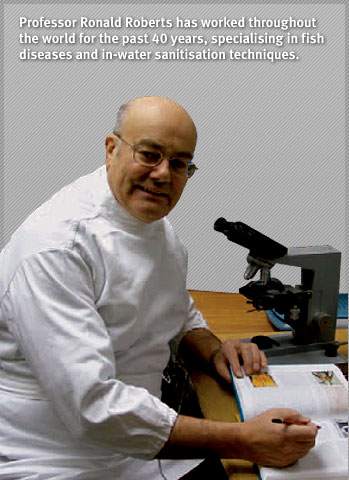 Professor Ronald Roberts has worked throughout the world for the past 40 years, specialising in fish diseases and in-water sanitisation techniques.